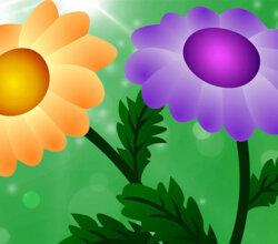 Free Vector Chrysanthemum