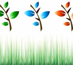 Leaf Branch Vector