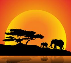 Elephants Family on Nature Walk Vector Image