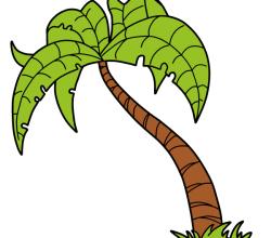 Stock Vector Palm Tree