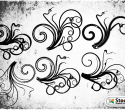 Floral Vector and Photoshop Brushes