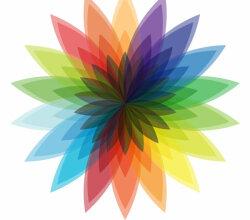 Vector Multicolor Flower Design