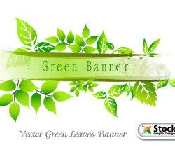 Green Leaves Banner Vector Art