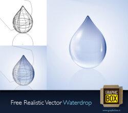Realistic Water Drop Free Vector