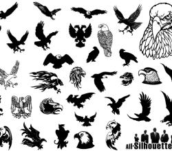 Eagle Vector Image Free