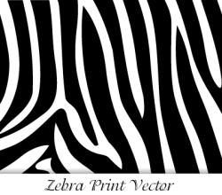 Zebra Print Vector Image Free