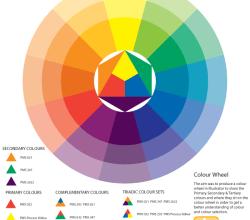Colour Wheel Vector Illustration