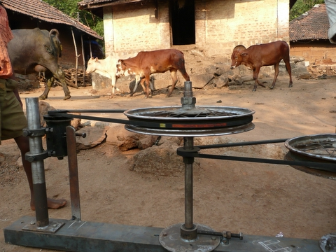 Cow Power in India