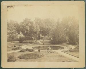 Asa Gray Garden Cabinet Card, c. 1881