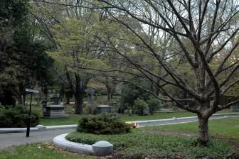 April 30 2008 221