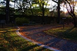 Vesper Path