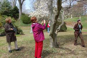 Members of the Mount Auburn Photo Club on Narcissus Path, Jennifer Johnston, 2011, color digital image.