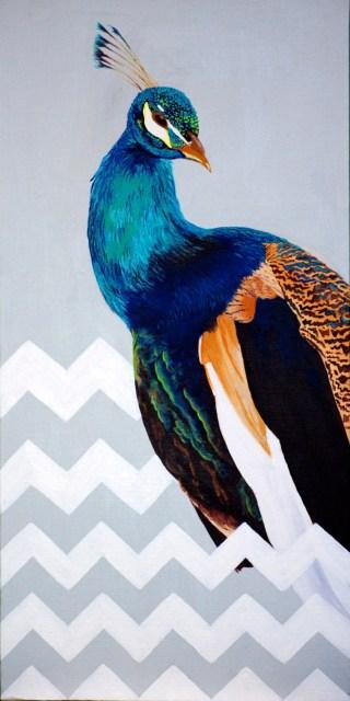 Chevron Peacock