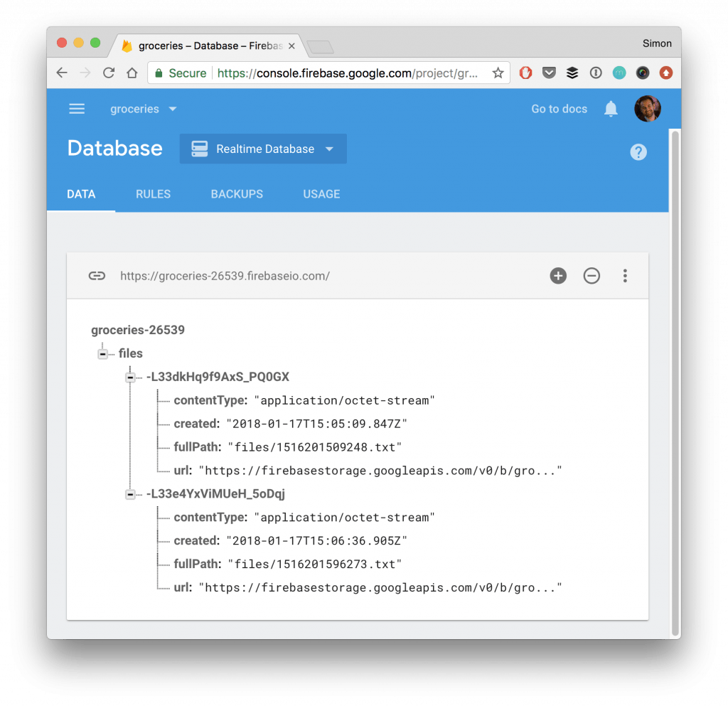 firebase-storage-database-entries