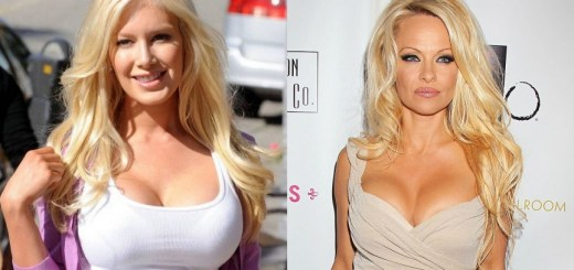 10 celebs that have fake breasts