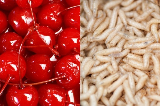 8 Commonly found food items that are gross on the inside