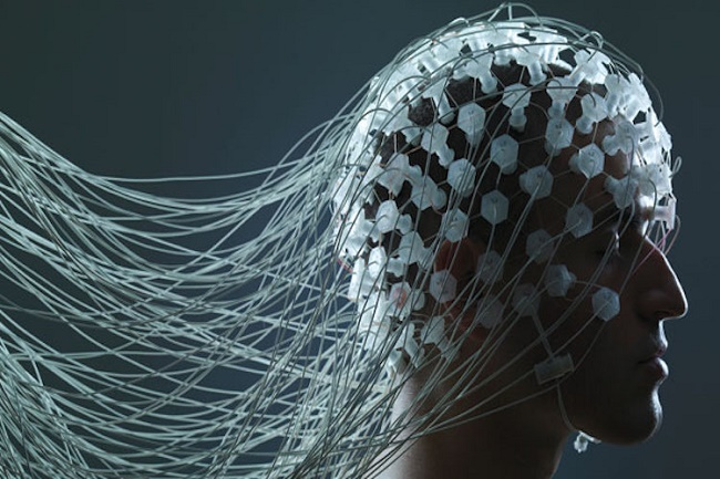 Optogenetics and the Brain