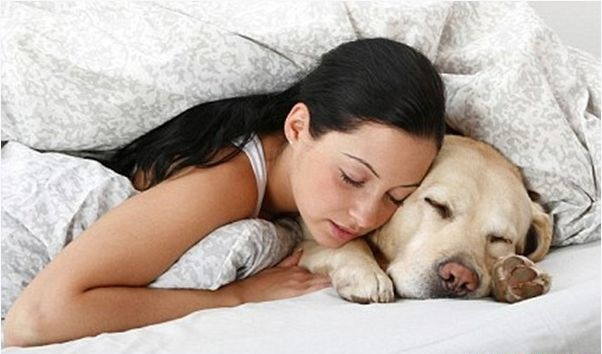 sleeping with dog cure depression