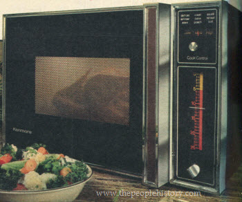 kitchen appliance which is banned in Russia