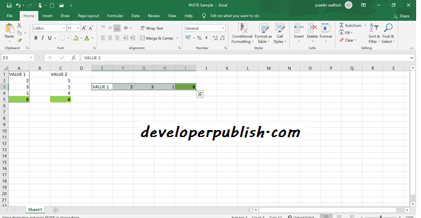PASTE OPTIONS IN MS EXCEL