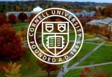 Cornell's Mellon Postdoctoral Fellowships