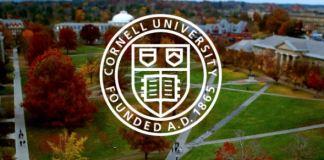 Cornell's Mellon Postdoctoral Fellowships