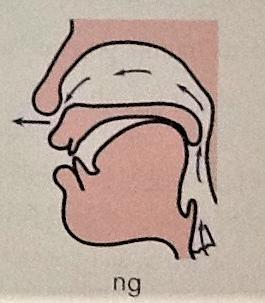 n.ng.Tongue.Placement.Chinese.