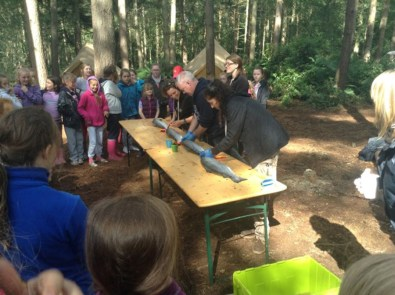 Bushcraft-July-2015-3