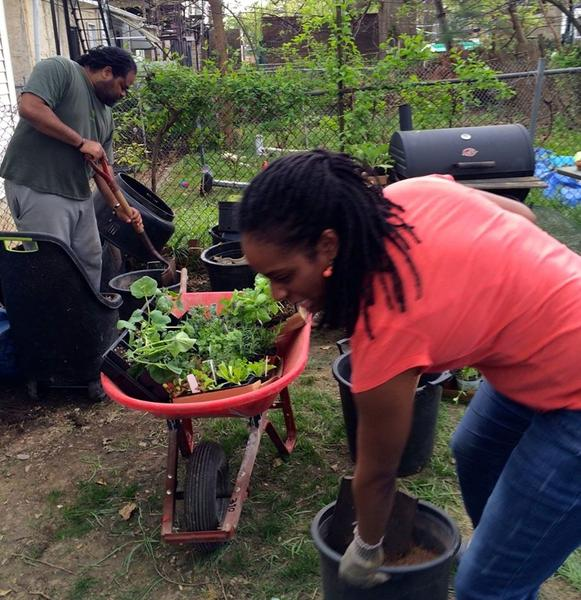 AAPDEP Organizing Philly Garden Collective