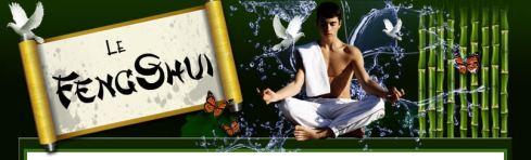 découvrez comment le Feng-Shui peut transformer votre vie et considérablement améliorer votre bien-être !
