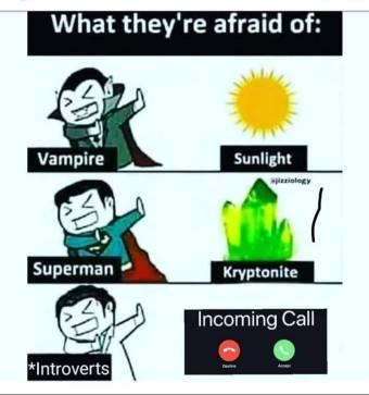 mbti peurs des introvertis