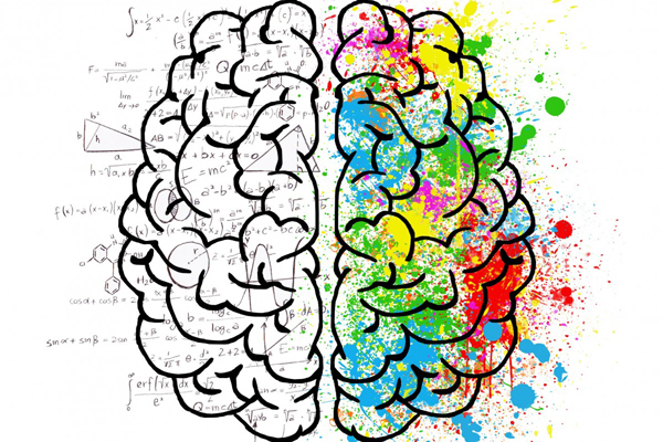cerveau-mbti