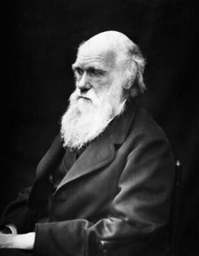 #1 ▷ Comment expliquer le manque de confiance en soi dans la théorie de Darwin? ✅ Formation