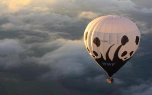 Montgolfière panda