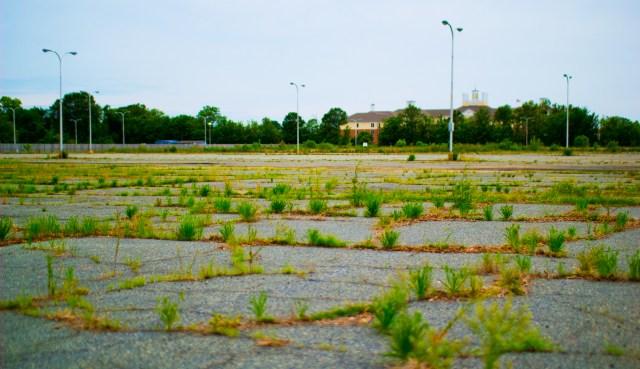 azalea shopping center parking lot