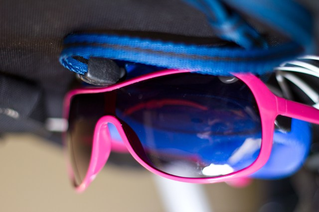sunglasses its whats for dinner