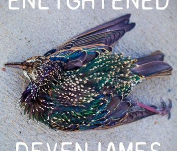 devenjames soundcloude - enllightened