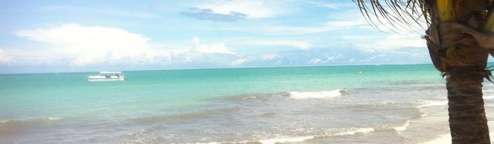 hibiscus-beach-988567_1280