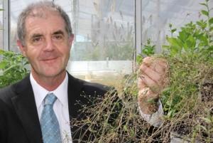 Prof. David Craik e suas plantas