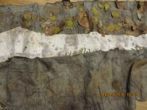 (1)-3- unrolled, outside layer with iron blanket 2016