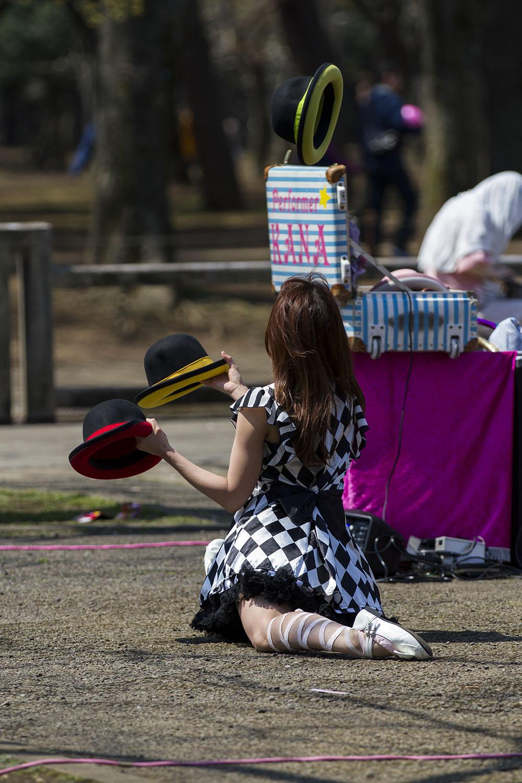 Hanami Picnic Yoyogi Park