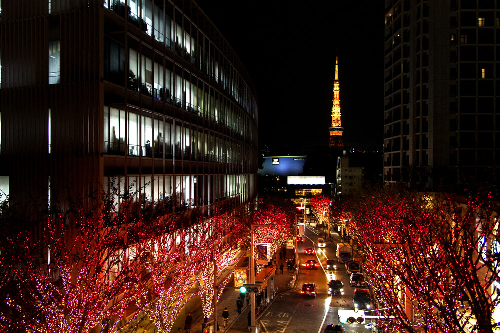 Japan Free & Easy 2015