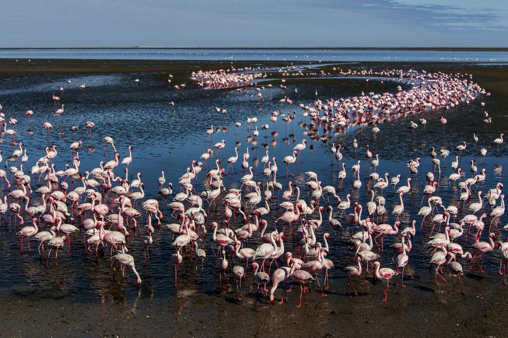 Swakopmund & Walvis Bay, Namibia