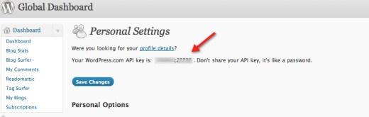 Wordpress API key