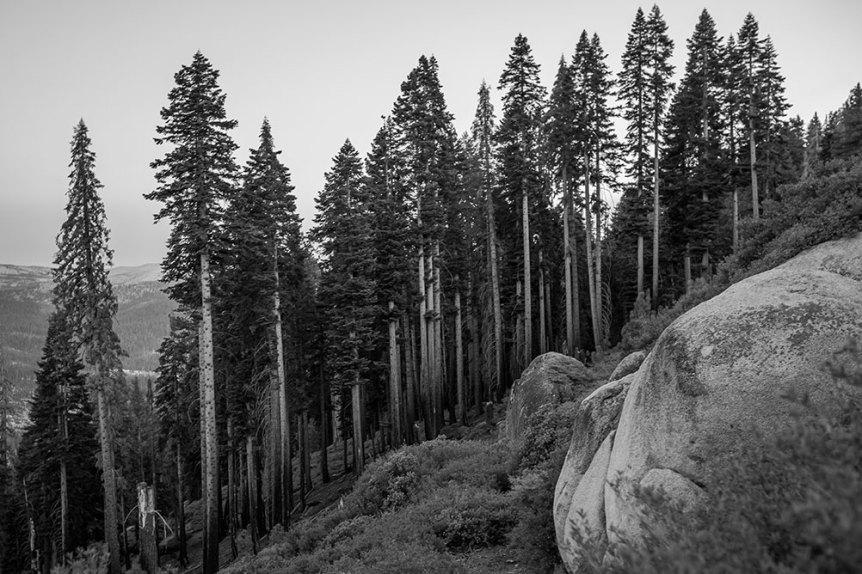 Yosemite-2016-(C2.2)-6