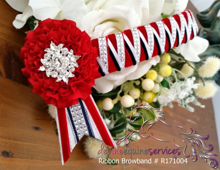 Ribbon Browband R171004