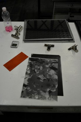 The Materials: transparency (all black), two sheets of glass, clips, plate, and timer.