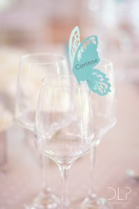 dlp-biscarini-wedding-5305