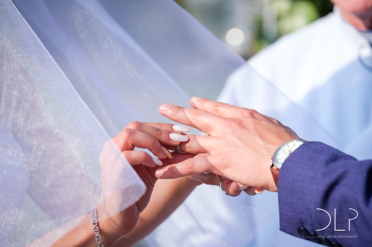 DLP-Gonelli-Wedding-0088