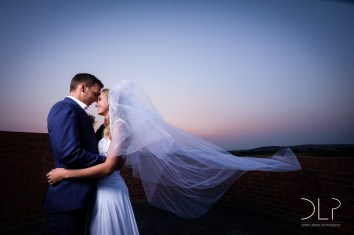 DLP-Gonelli-Wedding-0196